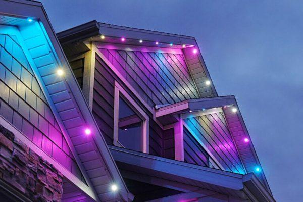 jellyfish-lighting-easter-led-lighting